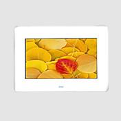 7 pulgadas CSTN marco de fotos digital con lector de tarjetas multi-función y mp3 y reproductor de vídeo (smq2028)