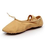 Zapatos de baile(Otro) -Ballet-No Personalizables-Tacón Plano