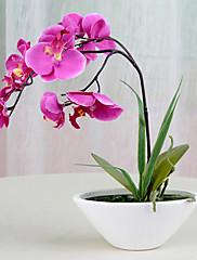 """12 """"h moderní styl růžové orchideje v keramické vázy uspořádání"""