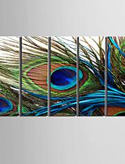 platno Set Mrtva prirodaPet ploha Horizontalno Ispis Art Zid dekor For Početna Dekoracija