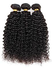 Lidské vlasy Vazby Brazilské vlasy Kinky Curly 6 měsíců 3 kusy Vazby na vlasy