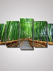 plátno Set Krajina Volný čas Moderní,Pět panelů Horizontálně Tisk Art Wall Decor For Home dekorace