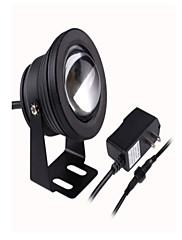 10 wattů 900-1100lm 12V teplá bílá / studená Chite američtí rozchod adaptér IP68 zcela vodotěsné podvodní lampa