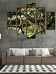 Kunst Print Blomstret/Botanisk Parfumeret,Fem Paneler Horisontal Print Vægdekor For Hjem Dekoration