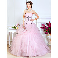 Prom / Formal Evening / Quinceanera / Sweet 16 Dress - Plus Size / Petite A-line / Ball Gown / Princess Strapless Floor-length Organza