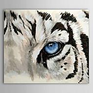 Main peinte peinture à l'huile animale 1304-AN0095