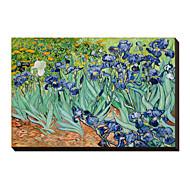 Irises Saint-Remy c1889 by Vincent Van Gogh Famous Stretched Canvas Print