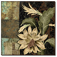Printed Canvas Art Baroque I by Color Bakery with Stretched Frame
