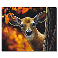 Printed Canvas Art Animal Surprise by Crista Forest with Stretched Frame