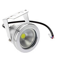 방수 10W 800-900LM 6000-6500K 자연적인 백색 빛 LED 투광 램프 (DC / AC 12V)