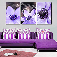 Stretched Canvas Art Floral Eye Set of 3