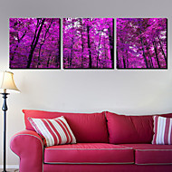 Stretched Canvas Art Landscape Dark Purple Trees Set of 3