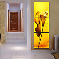 Stretched Canvas Art Floral Yellow Lilies Set of 3
