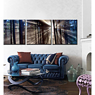Canvas Art Landscape suave Set Light of 3