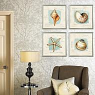 Shell ja Meritähti Still Life Kehystetty Canvas Print Set of 4