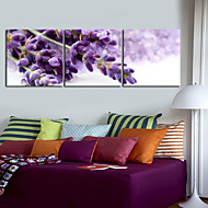 Stretched Canvas Art Floral Purple Buds Set of 3