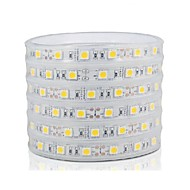 Casing Waterproof  60W  300 x SMD 5050 LED  Flexible Light Strip  (5M)