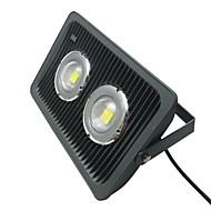 AC85-265V 100W LED Vandtæt Aluminium Flood Light