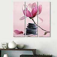 Reproducción en lienzo de arte Las Piedras y flores Juego de 3