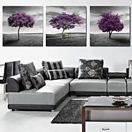 Stretched Canvas Print Art Landscape Purple Trees Set of 3