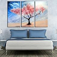 árvores arte da lona coloridos esticada no conjunto deserto de 3