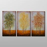 pintura al óleo pintada a mano del paisaje moderno con juego de marco estirado de 3