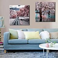 art de toile couleurs d'hiver étirées ensemble de 2