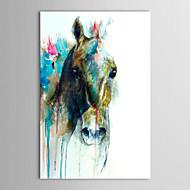Peint à la main peinture à l'huile animale Tête de cheval abstraite avec cadre étiré prêt à accrocher