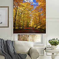 The Sunny Autumn Woods Roller Shade