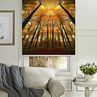 The Autumn Woods Roller Shade