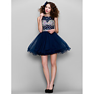 Dress - Dark Navy Plus Sizes / Petite A-line High Neck Short/Mini Tulle