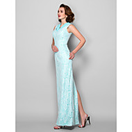 Sheath/Column Plus Size / Petite Mother of the Bride Dress - Floor-length Sleeveless Lace
