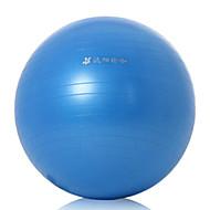 Yuanyang Griffigkeit extrudieren Yoga Ball 65cm