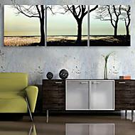 e-Home® allungata tela albero arte pittura decorativa set di 3