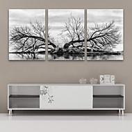 e-Home® venytetty kankaalle art vesi puinen koriste maalaus sarja 3