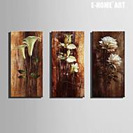 e-Home® venytetty kankaalle taide kukat koristelu maalaus sarja 3