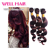 "4pcs/lot ""14-24""Inch Brazilian Virgin Hair Body Wave Human Hair 99j Color"