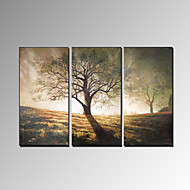 Håndmalte Landskap Moderne Tre Paneler Hang malte oljemaleri For Hjem Dekor