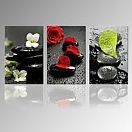 Astratto / Fantasia / Tempo libero / Paesaggio / Fotografia / Patriotico / Moderno / Romantico / Pop art / Viaggi Print CanvasTre