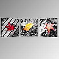 Paisaje / Fotográfico / Moderno / Romamticismo Impresión de la lona Tres Paneles Listo para colgar , Cuadrado