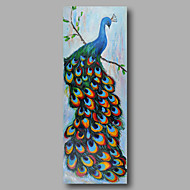 Hand-Painted Oil Painting on Canvas Wall Art Heavy Oils Animals Peacock Birds Home Deco One Panel Ready to Hang