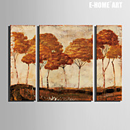 Landscape / Kasvitiede Canvas Tulosta 3 paneeli Valmis Hang , Pysty