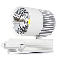 1 Stück MORSEN 20 W 1 COB 2000 LM Warmes Weiß / Kühles Weiß Dekorativ LED Weglampen AC 85-265 V