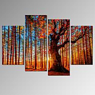 Wypoczynek / Krajobraz / Fotografia / Patriotyczny / Nowoczesny / Romantyczne / Podróże Blejtram Cztery panele Gotowy do powieszenia ,