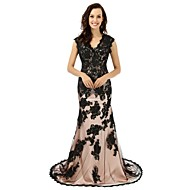 Formal Evening Dress Trumpet / Mermaid V-neck Court Train Lace with Appliques / Lace