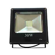 30W LED Floodlight 60 SMD 2835 2400lm Waterproof AC 85-265V Yangming