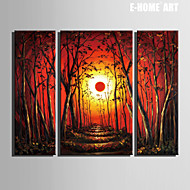 E-HOME® Stretched Canvas Art The Sun And The Woods Decoration Painting  Set of 3