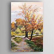 Oil Painting Autumn Landscape  Hand Painted Canvas with Stretched Framed Ready to Hang