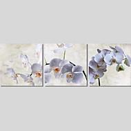 Botanisk / Modern / Romantik Canvastryck Tre paneler Redo att hänga,Horisontell