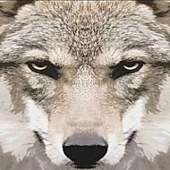 JAMMORY Wolf Landscape / Animal / Fantasy Wall Murals Multicolor Canvas 3D Wallpaper